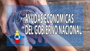 Ayudas económicas del Gobierno Nacional
